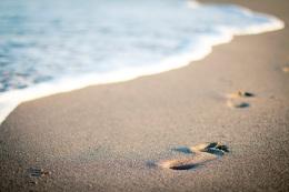 orme-sulla-sabbia-margaret-fishback-powers