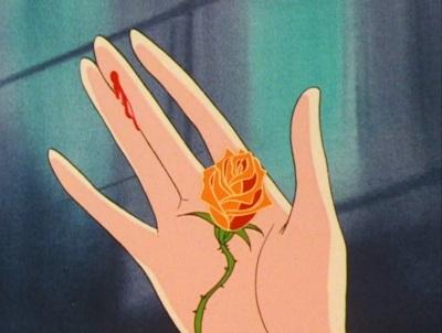 Risultati immagini per pungersi con una rosa